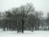 Winterwords: Britten und Schubert